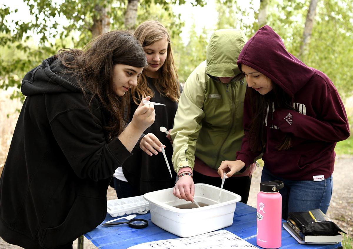 Washington School River Ecology 2