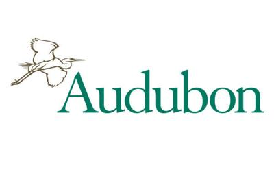 national audubon stockimage