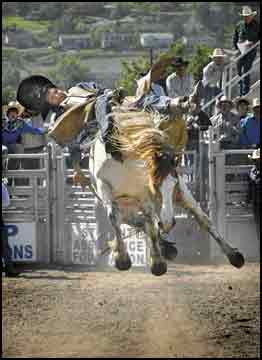 On to nationals: Area cowpokes punch tickets to high school finals in New Mexico