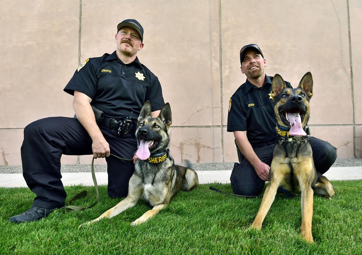 093016-mis-nws-deputy-dogs-01