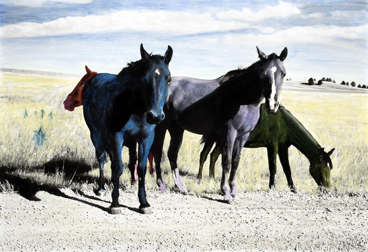 """Chris Autio, """"Horses"""""""