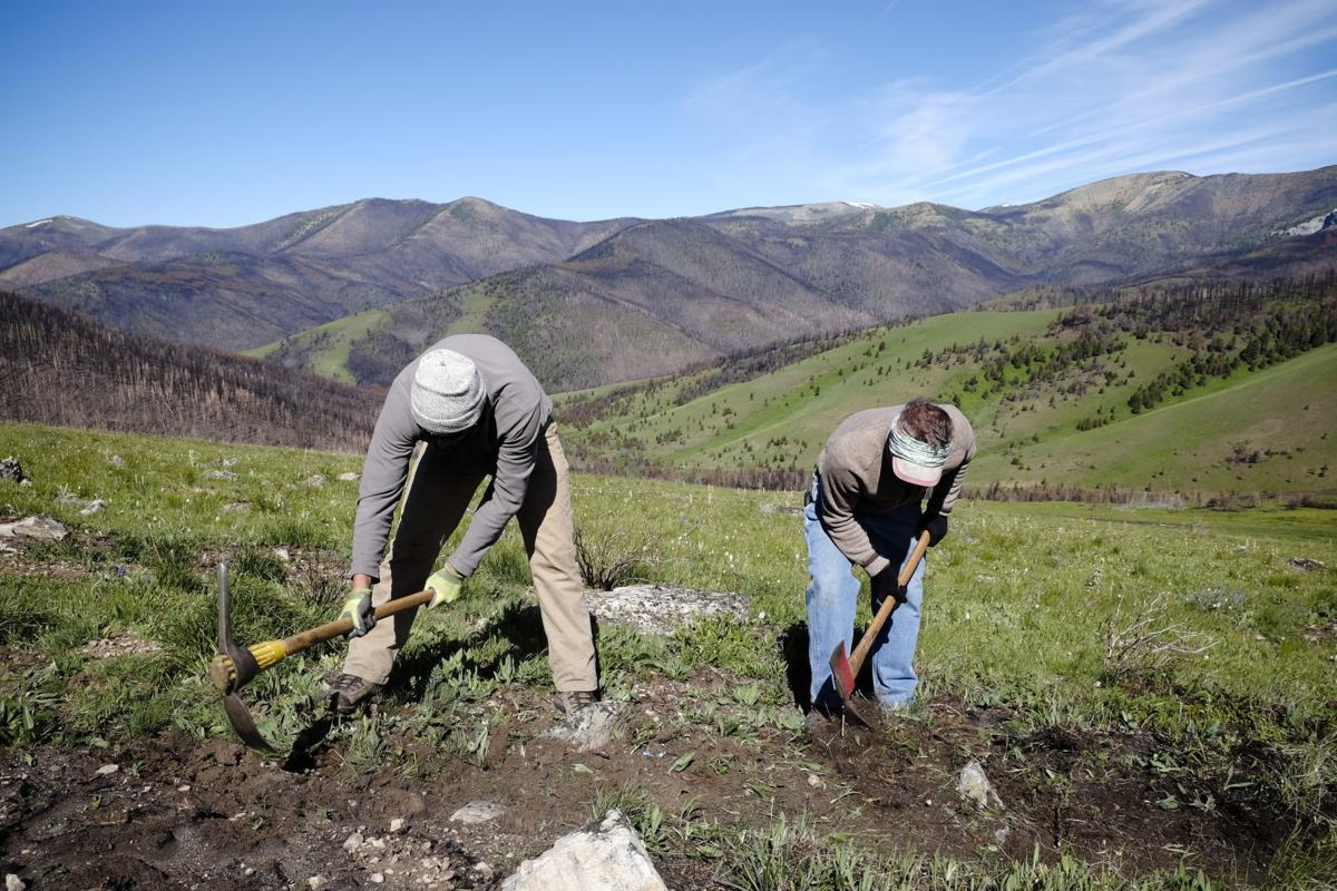 Volunteers repair fire-damaged Continental Divide National Scenic Trail