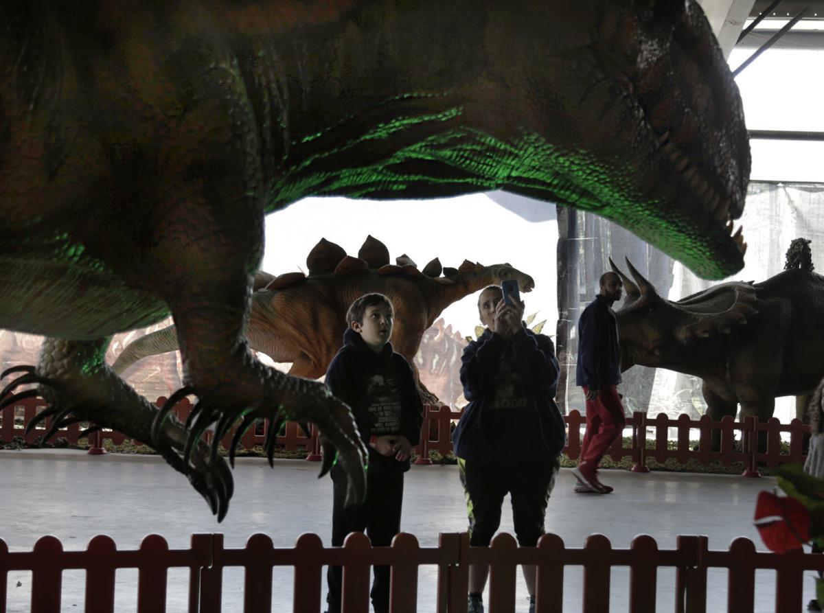 Jurassic Tour' brings 50 life-sized dinosaur models to