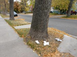 Billings residents report missing, vandalized ballots