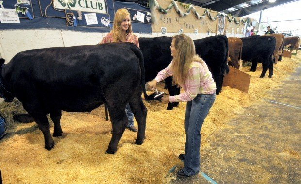 County fairs 4 hffa livestock sale brings lower bids but top 081609 4h sale 1 thecheapjerseys Image collections