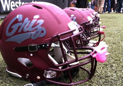 Griz helmets