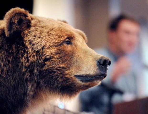 032212 bears1 mg.jpg