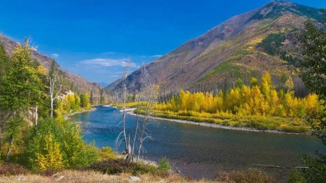 Flathead Forest begins revision of management plan for three forks of Flathead River