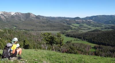 North of Yellowstone