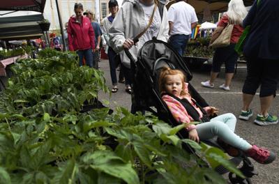 050717 farmers market-1-tm.jpg