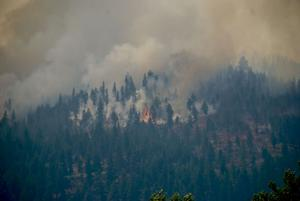 Lolo Peak fire moves within a mile of homes on Highway 12