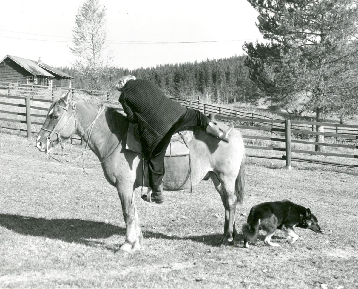 Dorothy Johnson mounting horse