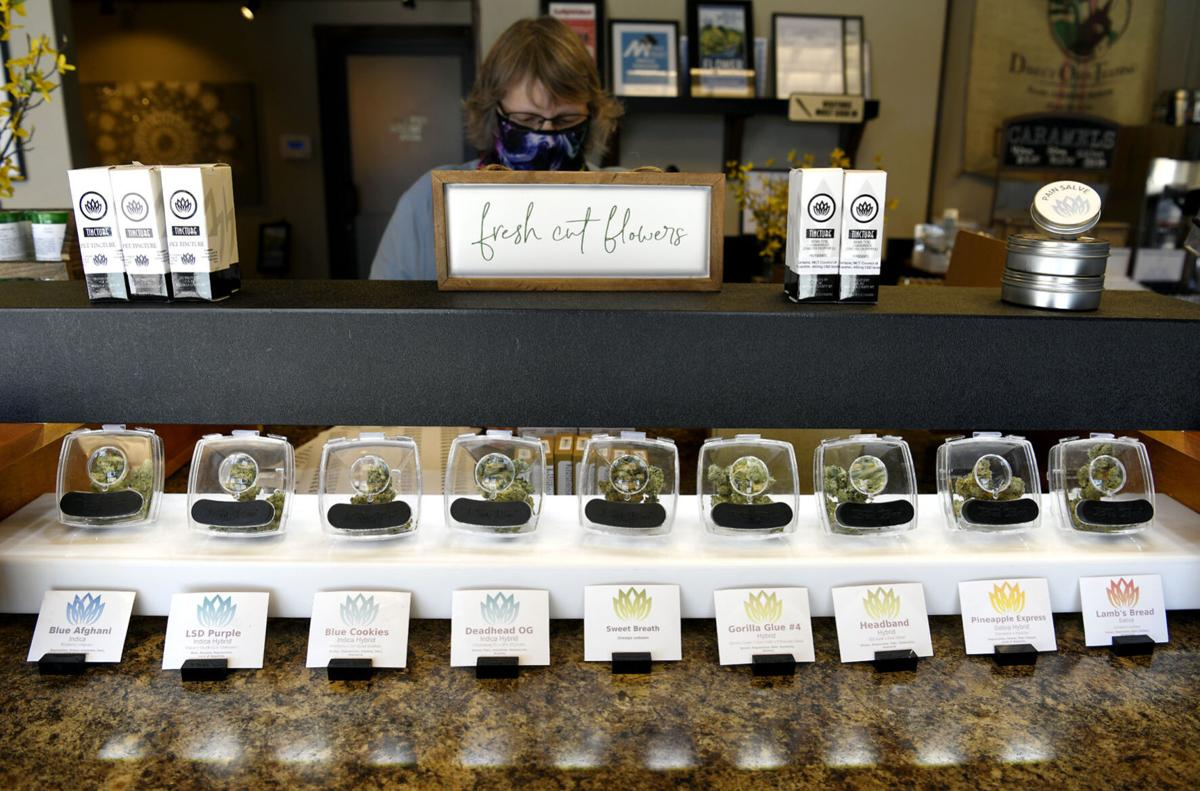 Marijuana Initiative Economics