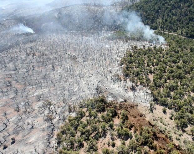 Utah Fire Plane Crash
