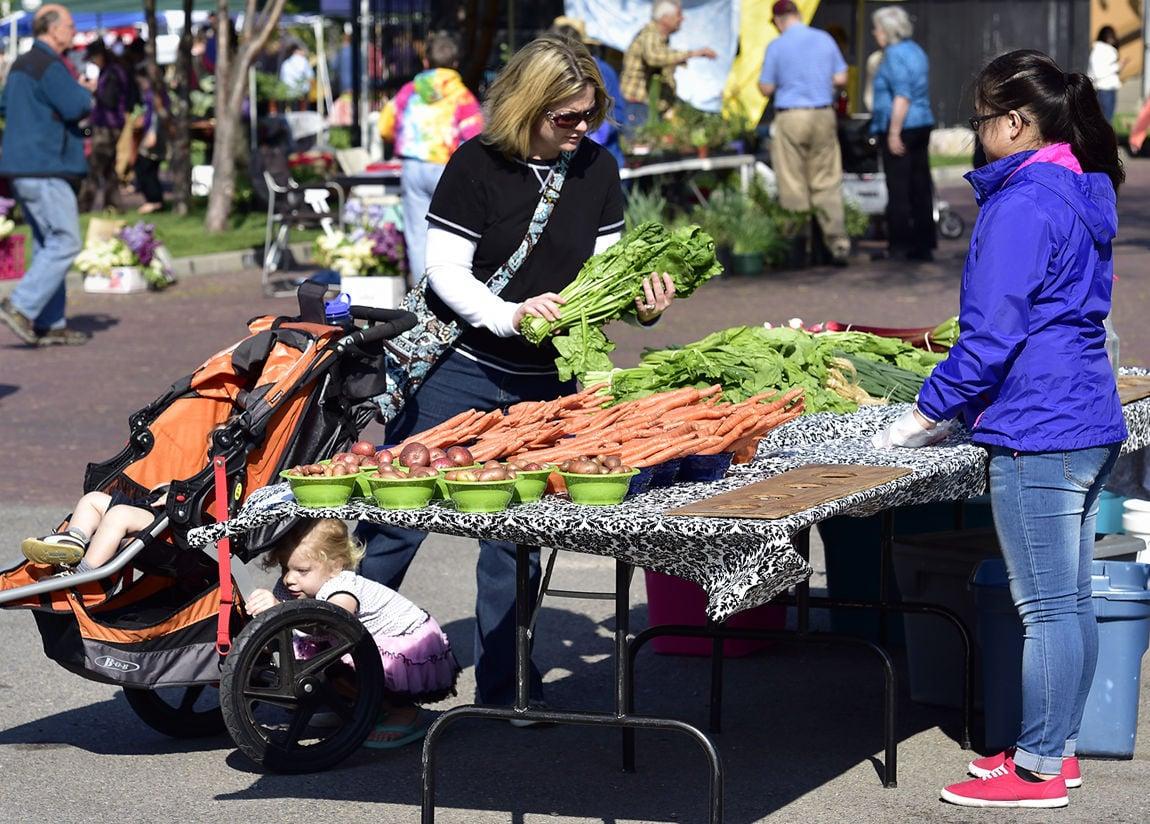 Missoula market season