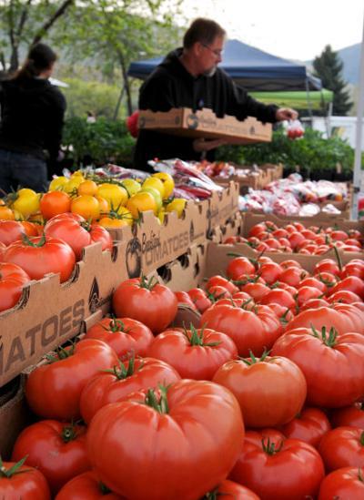 051213 farmers market2 mg.jpg