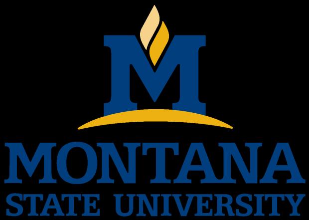Montana State University non-sports logo