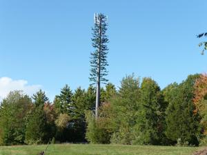 Flathead County approves cell tower near Glacier