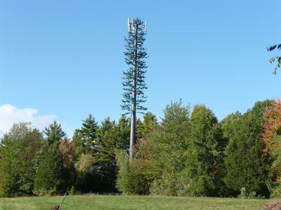 monopine cell tower