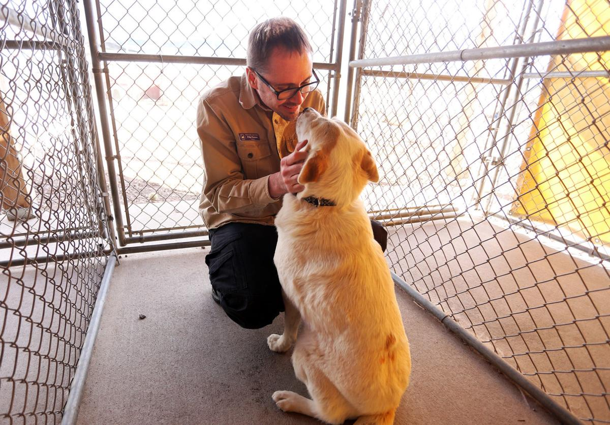 Mission Valley Animal Shelter
