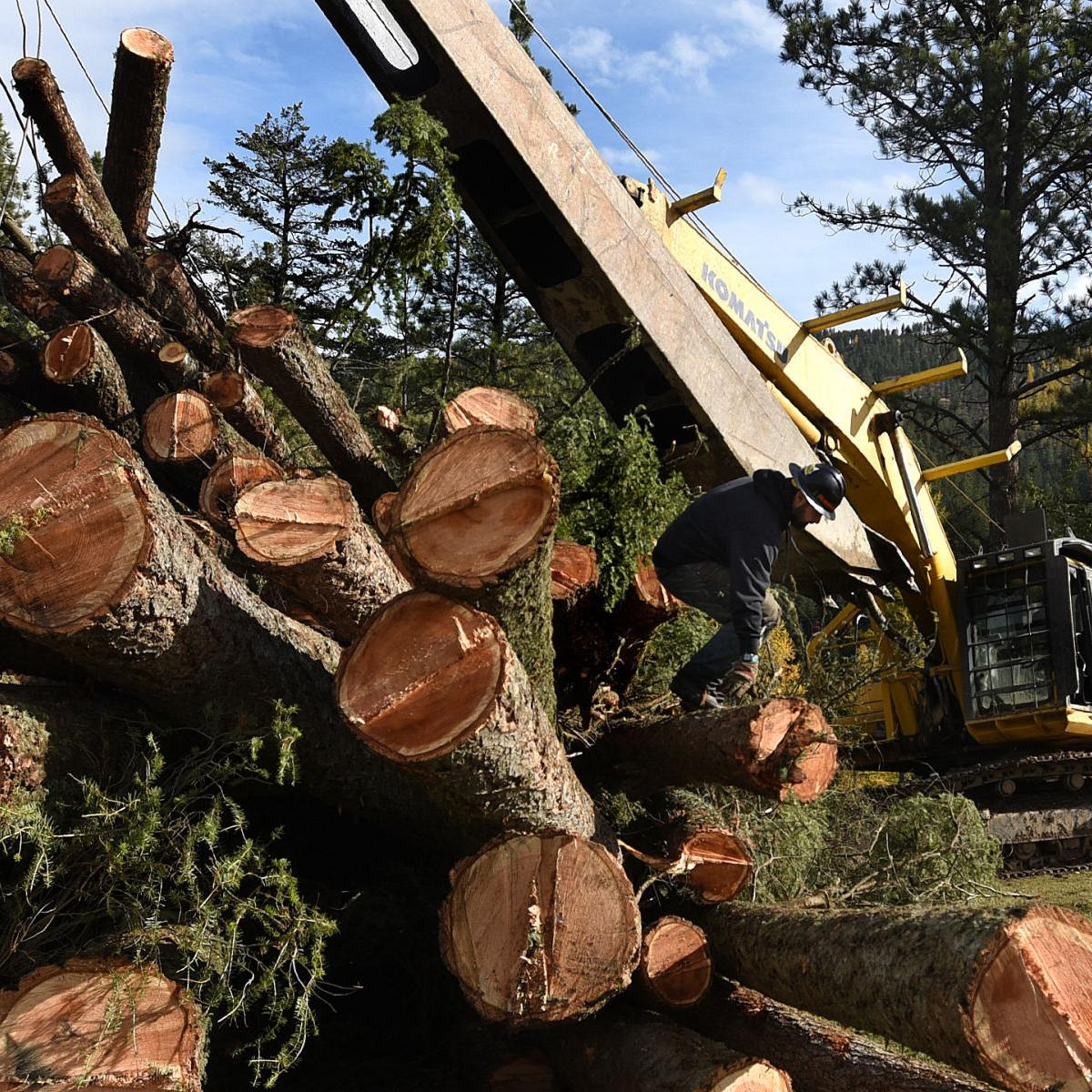 Timber industry leaves lasting traditions and scars across Montana