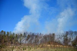 Fall forest fire season in effect