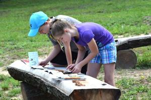 National Park Service hosts free nature camps this July