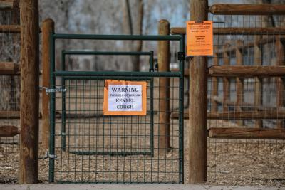 Dog park temporarily closed