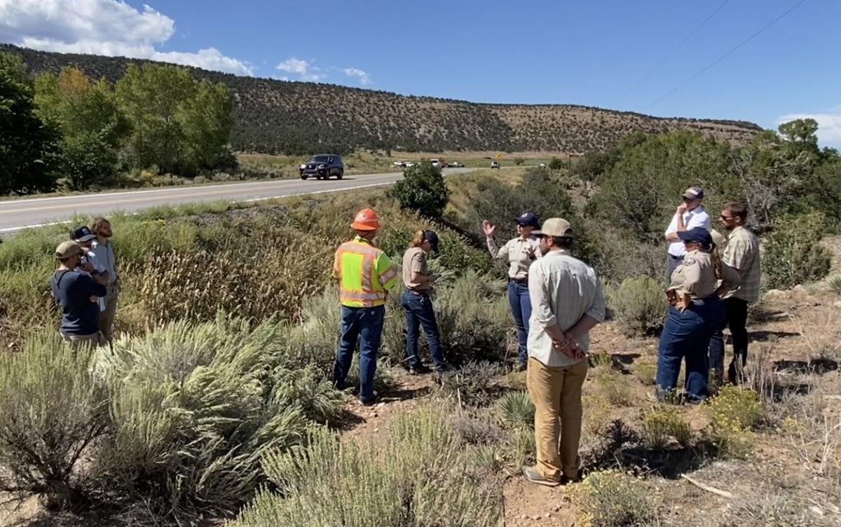 CDOT ramping up safety on U.S. 550 with wildlife underpass at Billy Creek