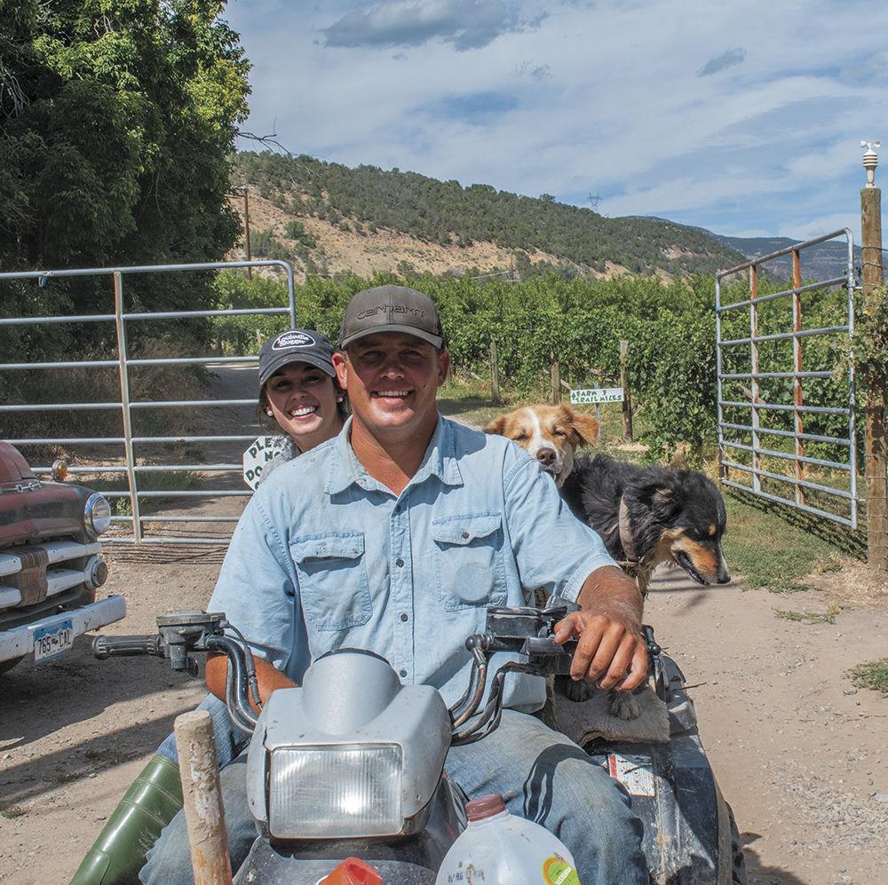 farm ranch story