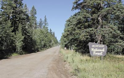 Uncompahgre National Forest USFS plan hightlights