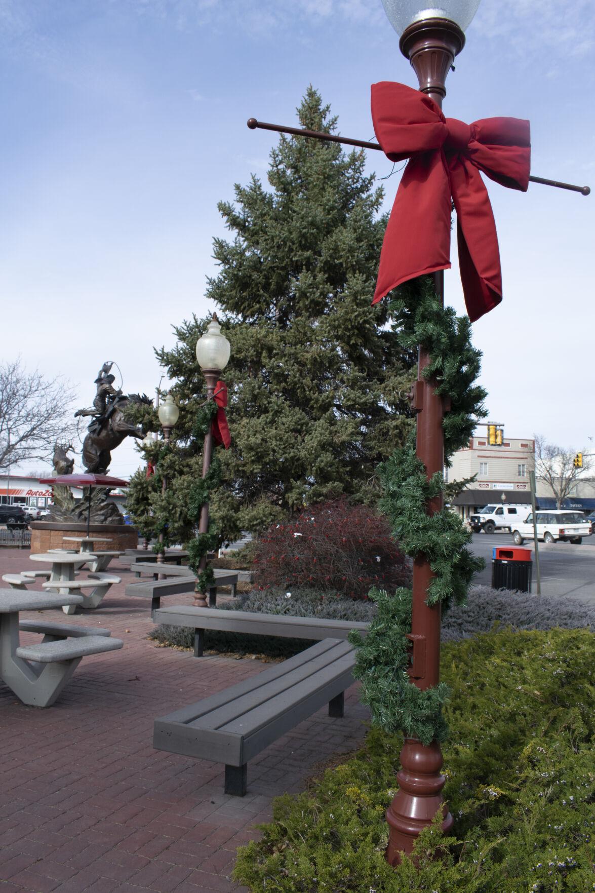 Montrose Christmas decorations