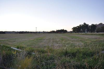 Public sentiment regarding the 1890 Homestead Project remains mixed