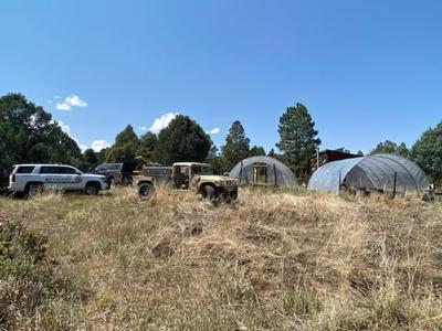 Colorado Bureau of Investigation seizes multiple pounds of pot plants in Montrose and San Miguel counties raids