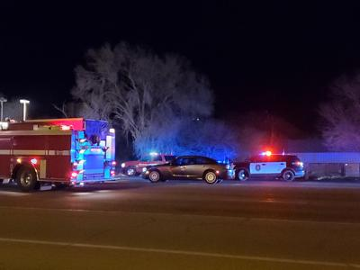 Pedestrian and dog struck and killed on Townsend Avenue