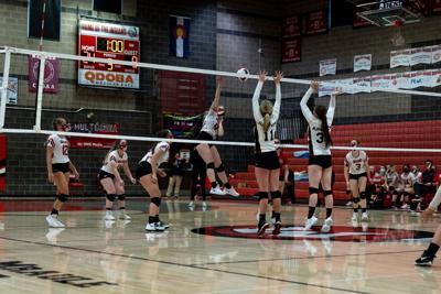Montrose volleyball Hallie Fenton