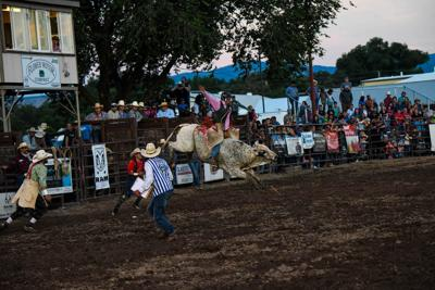 Rodeos and fairs are a go for Montrose County under new COVID-19 variance