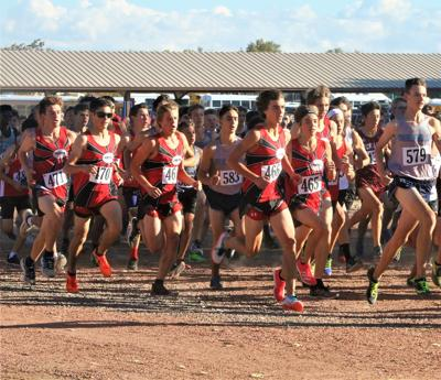 Montrose cross country athletes readying for trip to final ...