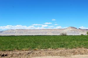 Colorado the Beautiful: Mesa County landscapes