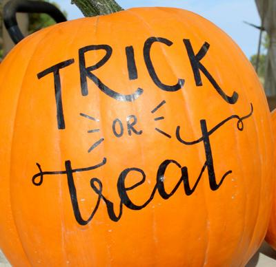 web pumpkin trick treat IMG_0124.jpg