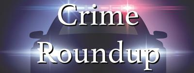 Crime Roundup for November 20