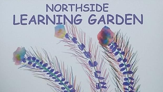 COLUMN: Northside Teacher feted for conservation work
