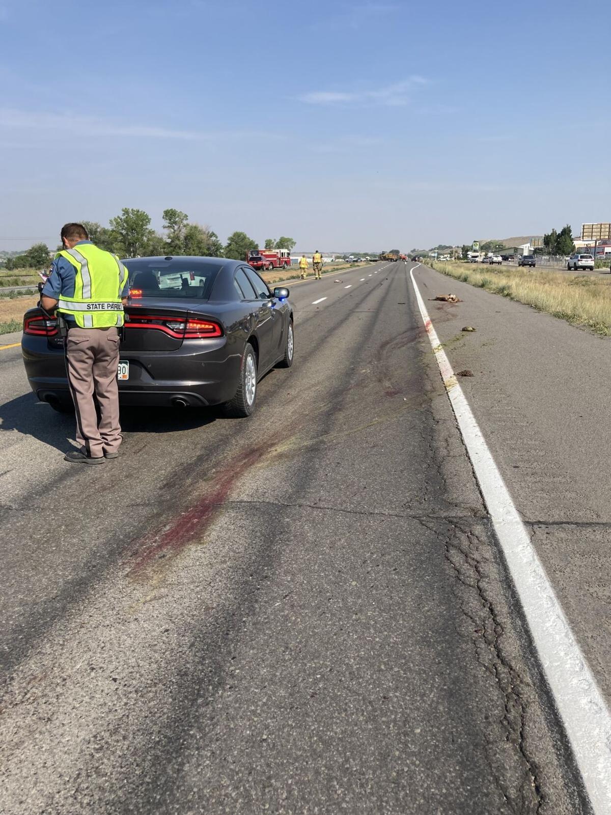 6/17/21 accident: deer blood
