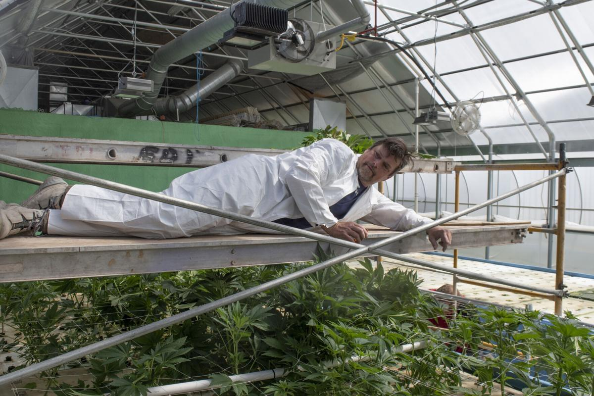 South River masters sustainability through aquaponics