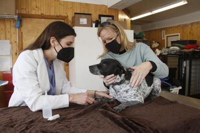 Second Chance expands vet care to help keep pets with people