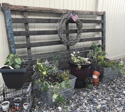 Large containers are ideal for growing vegetables