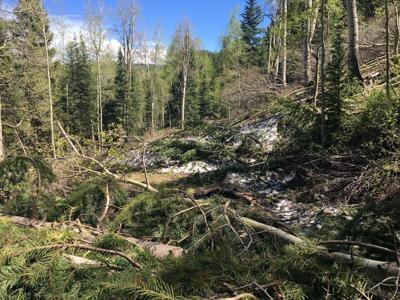 High Mesa Road closed by avalanche debris
