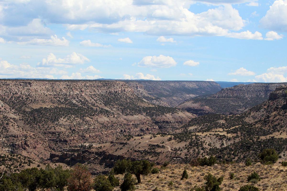 PHOTOS- FOCUS Montrose County landscapes