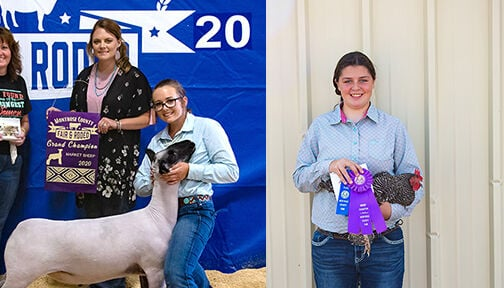 Poultry and Lamb grand champions
