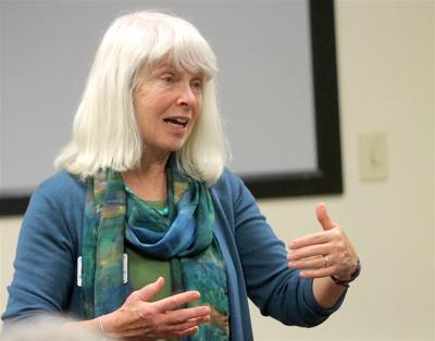 Diane Mitsch Bush touts experience in U.S. House race; says her leadership can help bring jobs and tame health care costs